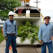 tree-crew-two-mulcher